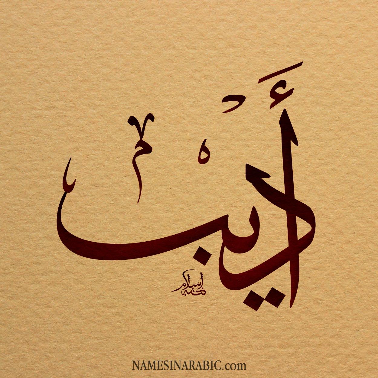 صورة اسم اديب Adib اسم اديب بالخط العربي من موقع الأسماء بالخط العربي بريشة الفنان إسلام ابن الفضل