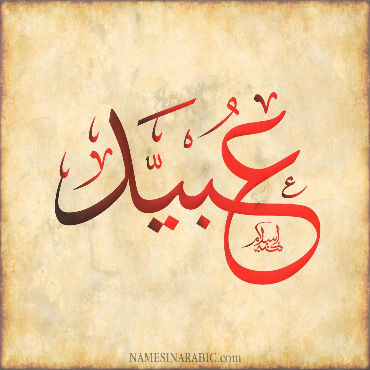 معنى اسم ع ب ي د قاموس الأسماء و المعاني