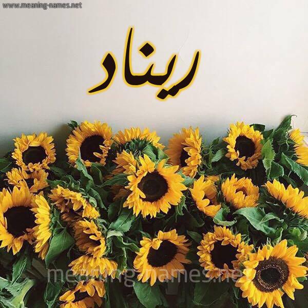 مشاهير يحملون اسم ريناد و معنى اسم ريناد قاموس الأسماء و المعاني