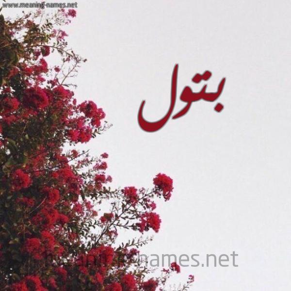 مشاهير يحملون اسم بتول و معنى اسم بتول قاموس الأسماء و المعاني