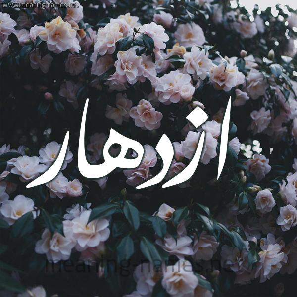 شكل 11 صوره ورود فل وياسمين للإسم بخط رقعة صورة اسم ازدهار Azdhar