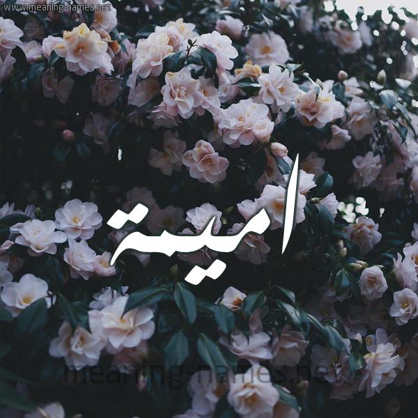 صورة اسم اميمة Omima شكل 11 صوره ورود فل وياسمين للإسم بخط رقعة