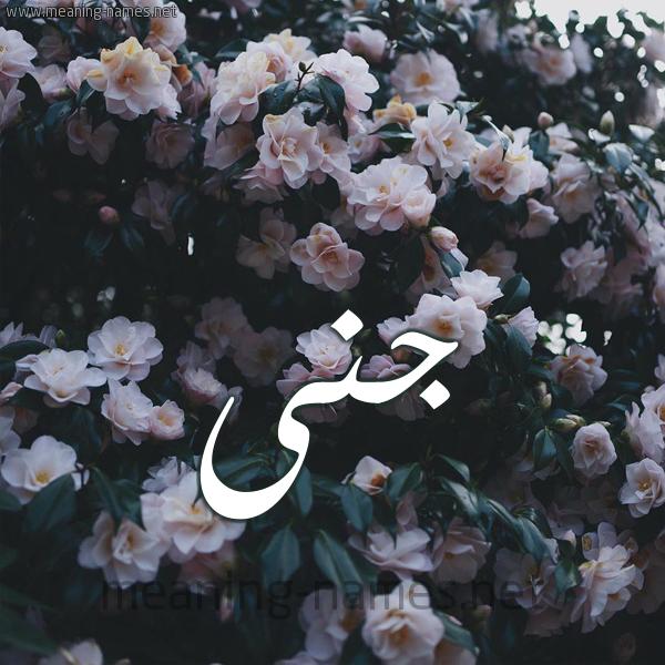 ج ن ى شكل 11 صوره ورود فل وياسمين للإسم بخط رقعة كتابة على الورد 2021