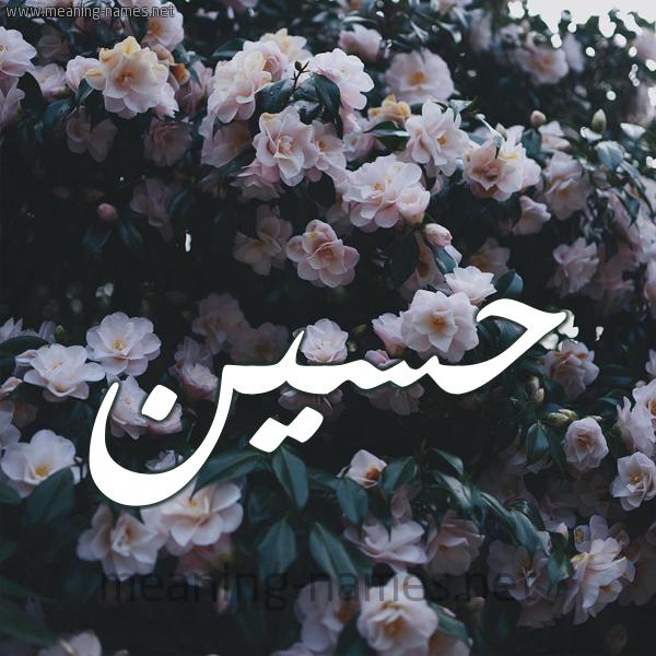 صورة اسم حسين Hussien شكل 11 صوره ورود فل وياسمين للإسم بخط رقعة