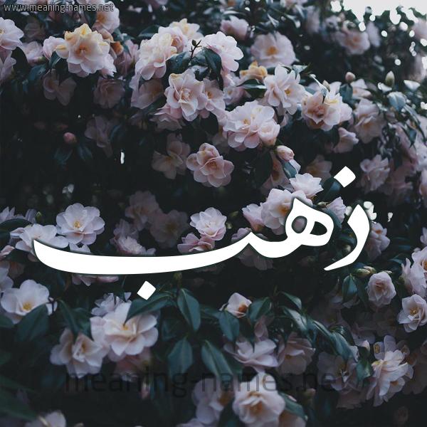 صورة اسم ذهب Dahab شكل 11 صوره ورود فل وياسمين للإسم بخط رقعة