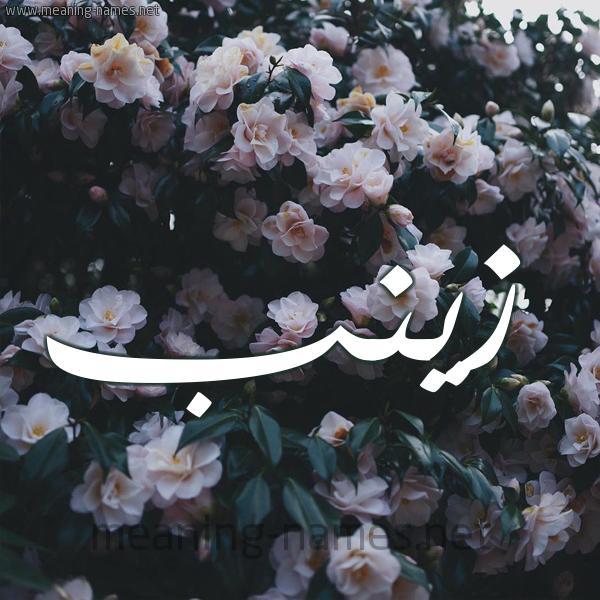 صورة اسم زينب Zaynab شكل 11 صوره ورود فل وياسمين للإسم بخط رقعة