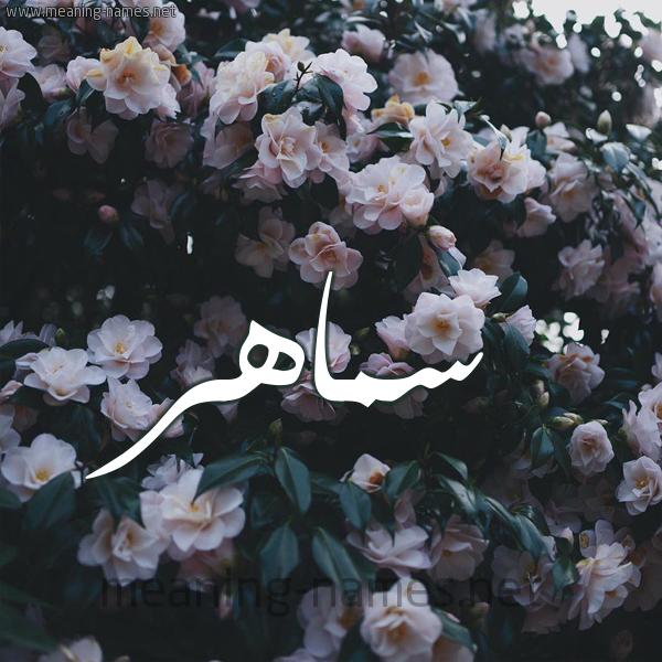 شكل 11 صوره ورود فل وياسمين للإسم بخط رقعة صورة اسم سَماهِر SAMAHER
