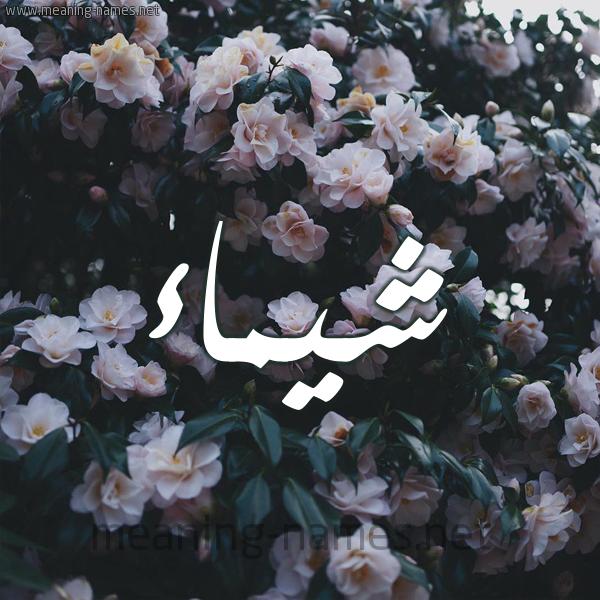 كل زخرفة وحروف شيماء زخرفة أسماء كول