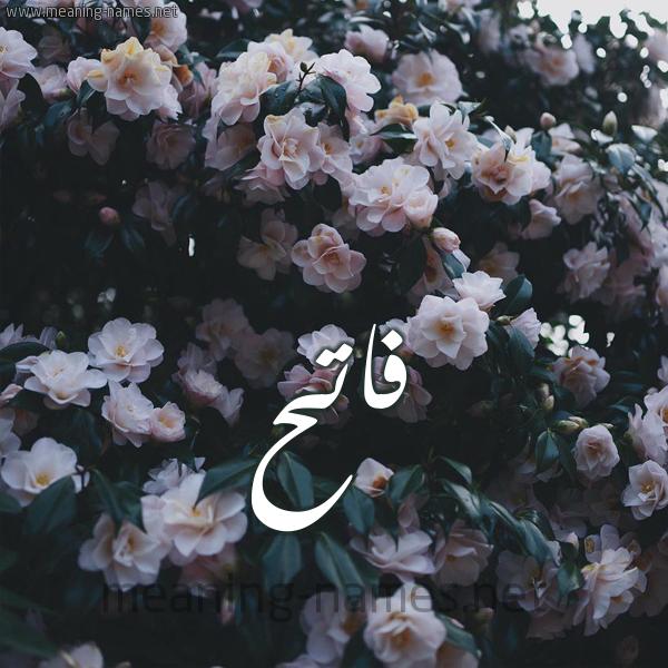 شكل 11 صوره ورود فل وياسمين للإسم بخط رقعة صورة اسم فاتح Fath