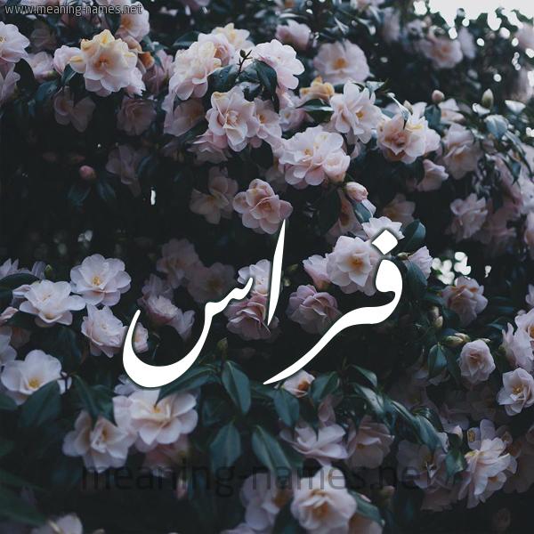 صورة اسم فراس Fras شكل 11 صوره ورود فل وياسمين للإسم بخط رقعة