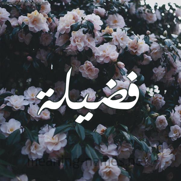شكل 11 صوره ورود فل وياسمين للإسم بخط رقعة صورة اسم فَضيلة FADILH