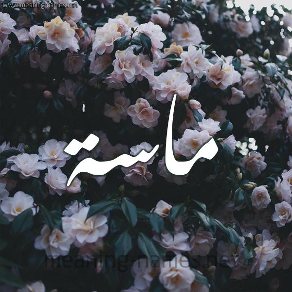صورة اسم ماسة Masa شكل 11 صوره ورود فل وياسمين للإسم بخط رقعة