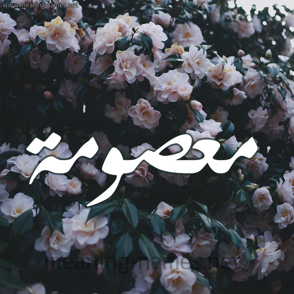شكل 11 صوره ورود فل وياسمين للإسم بخط رقعة صورة اسم معصومة MASOma