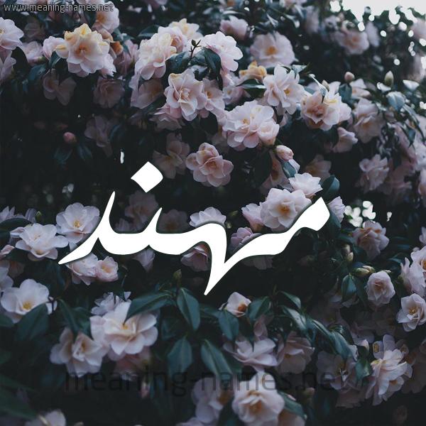 شكل 11 صوره ورود فل وياسمين للإسم بخط رقعة صورة اسم مُهَنَّد MOHANAD