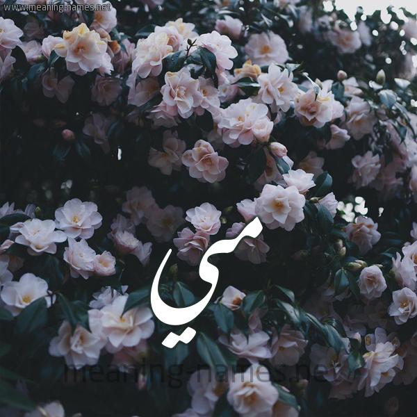 صورة اسم مي Mai شكل 11 صوره ورود فل وياسمين للإسم بخط رقعة