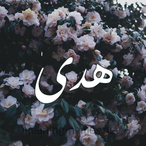 صورة اسم هدى Hoda شكل 11 صوره ورود فل وياسمين للإسم بخط رقعة