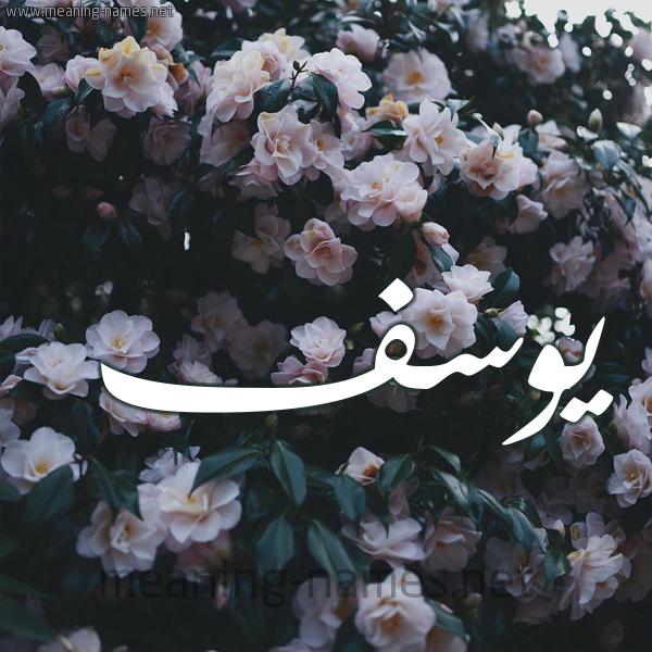 شكل 11 صوره ورود فل وياسمين للإسم بخط رقعة صورة اسم يوسف Yousef