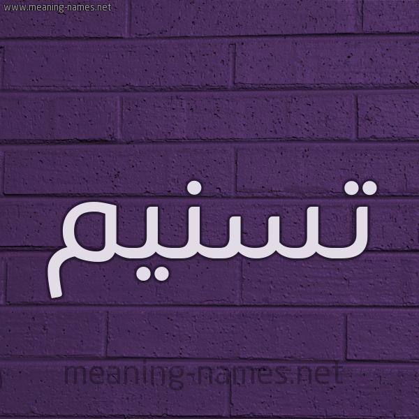 شكل 12 الإسم على الحائط الجداري صورة اسم تسنيم Tsnym