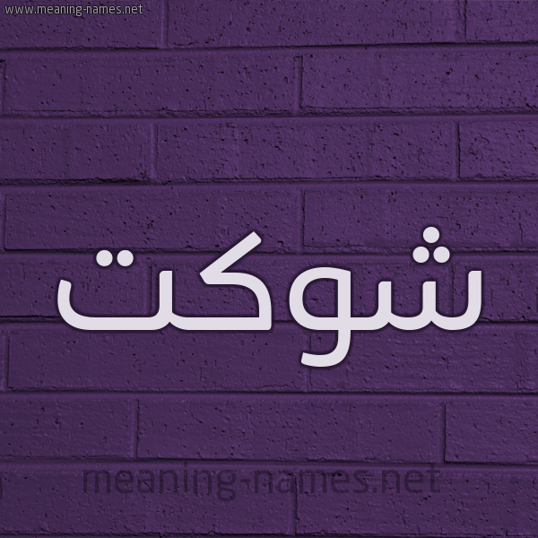 شكل 12 الإسم على الحائط الجداري صورة اسم شَوْكَت SHAOKAT