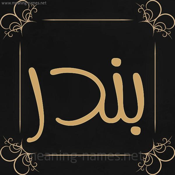 معنى اسم بندر Bndr قاموس الأسماء و المعاني