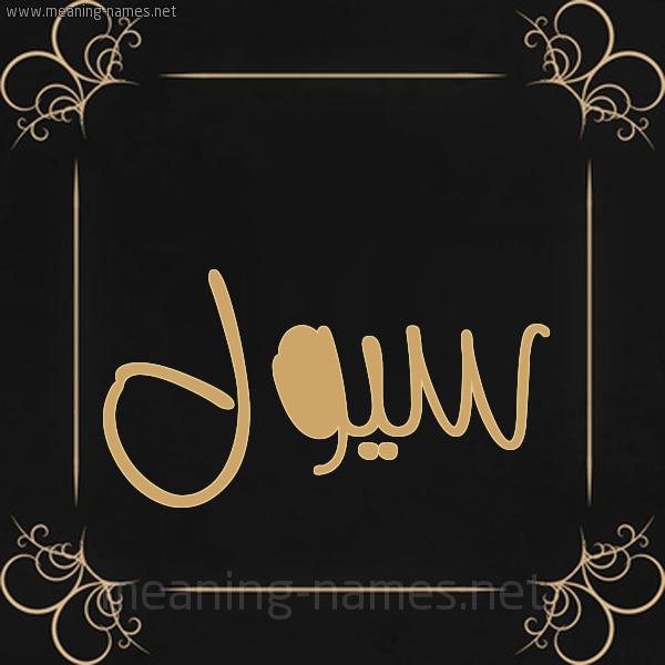 صورة اسم سيول Sywl شكل 14 الإسم على خلفية سوداء واطار برواز ذهبي
