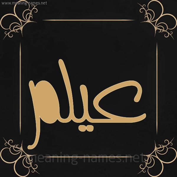 صورة اسم عيلم Aylm شكل 14 الإسم على خلفية سوداء واطار برواز ذهبي