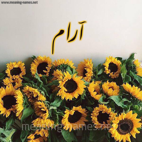 صورة اسم آرام ARAM شكل 17 صوره دوار الشمس للإسم بخط رقعة