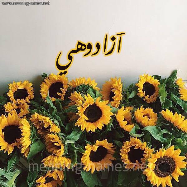 صورة اسم آزادوهي AZADOHI شكل 17 صوره دوار الشمس للإسم بخط رقعة