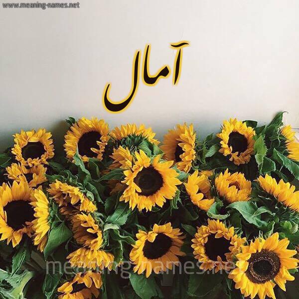 صورة اسم آمال AMAL شكل 17 صوره دوار الشمس للإسم بخط رقعة