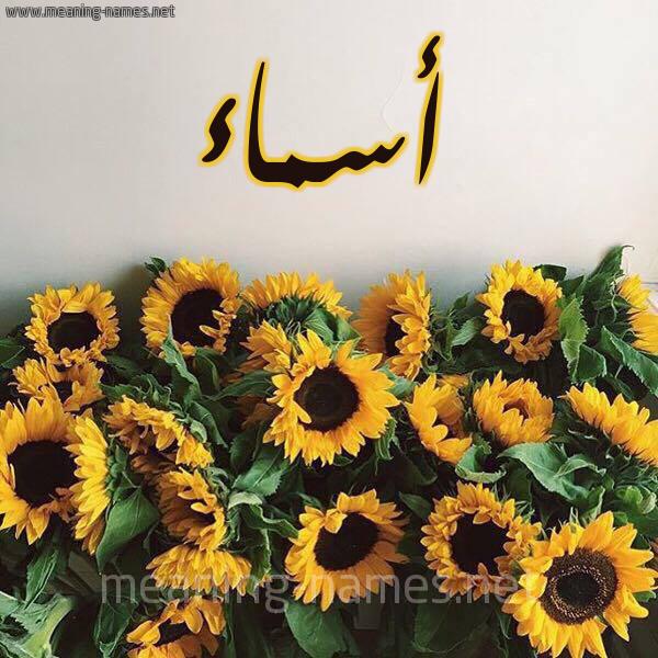 صورة اسم أسماء Asmaa شكل 17 صوره دوار الشمس للإسم بخط رقعة
