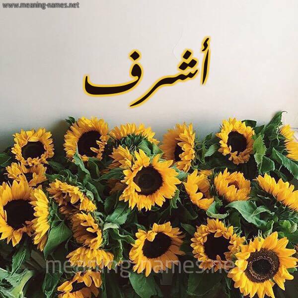 صورة اسم أشرف Ashrf شكل 17 صوره دوار الشمس للإسم بخط رقعة