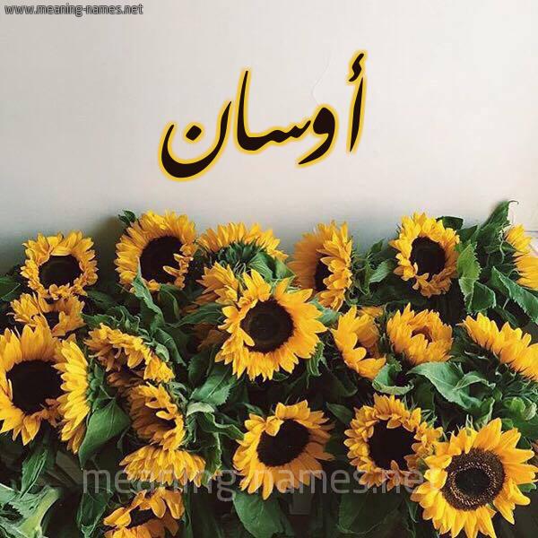 صورة اسم أوسان Awsan شكل 17 صوره دوار الشمس للإسم بخط رقعة