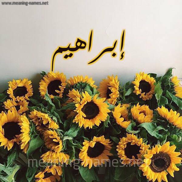 صورة اسم إبراهيم Ibrahim شكل 17 صوره دوار الشمس للإسم بخط رقعة