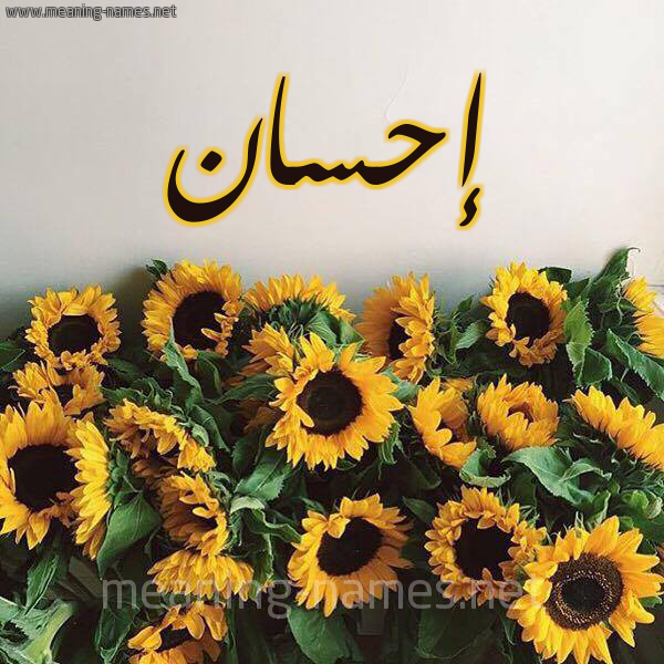 صورة اسم إحسان Ehsan شكل 17 صوره دوار الشمس للإسم بخط رقعة