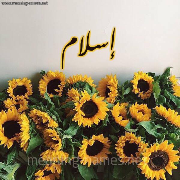 صورة اسم إسلام Eslam شكل 17 صوره دوار الشمس للإسم بخط رقعة