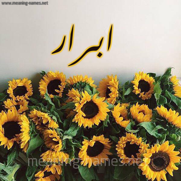 صورة اسم ابرار Abrar شكل 17 صوره دوار الشمس للإسم بخط رقعة