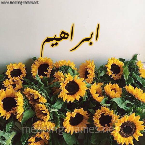 صورة اسم ابراهيم Ibrahim شكل 17 صوره دوار الشمس للإسم بخط رقعة