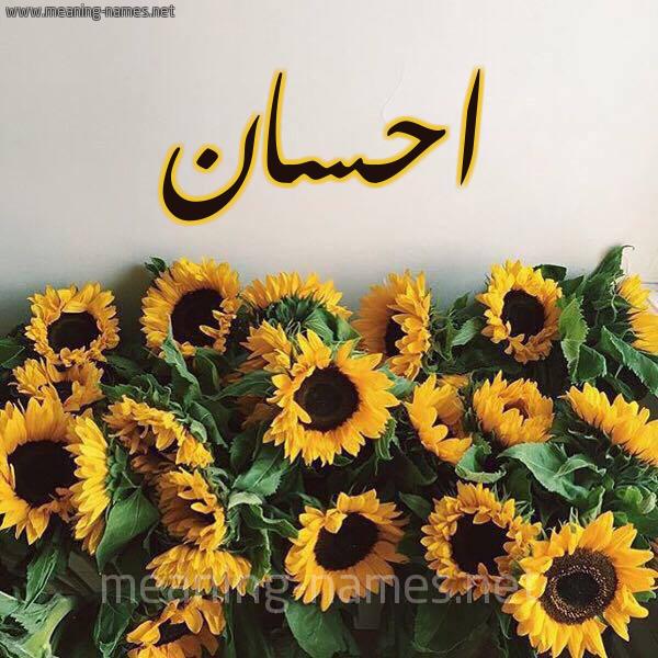 صورة اسم احسان Ehsan شكل 17 صوره دوار الشمس للإسم بخط رقعة