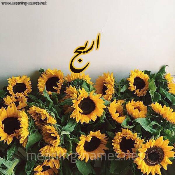 صورة اسم اريج Arij شكل 17 صوره دوار الشمس للإسم بخط رقعة