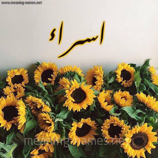 صورة اسم اسراء Esraa شكل 17 صوره دوار الشمس للإسم بخط رقعة