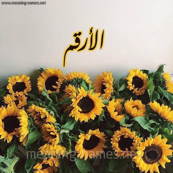 صورة اسم الأرقم Alarqm شكل 17 صوره دوار الشمس للإسم بخط رقعة