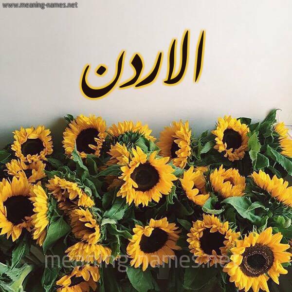 صورة اسم الاردن Jordan شكل 17 صوره دوار الشمس للإسم بخط رقعة