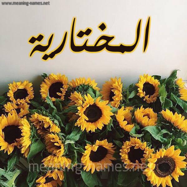 صورة اسم المختارية Almokhtariya شكل 17 صوره دوار الشمس للإسم بخط رقعة