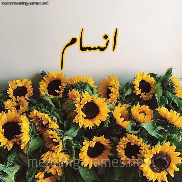 صورة اسم انسام Ansam شكل 17 صوره دوار الشمس للإسم بخط رقعة
