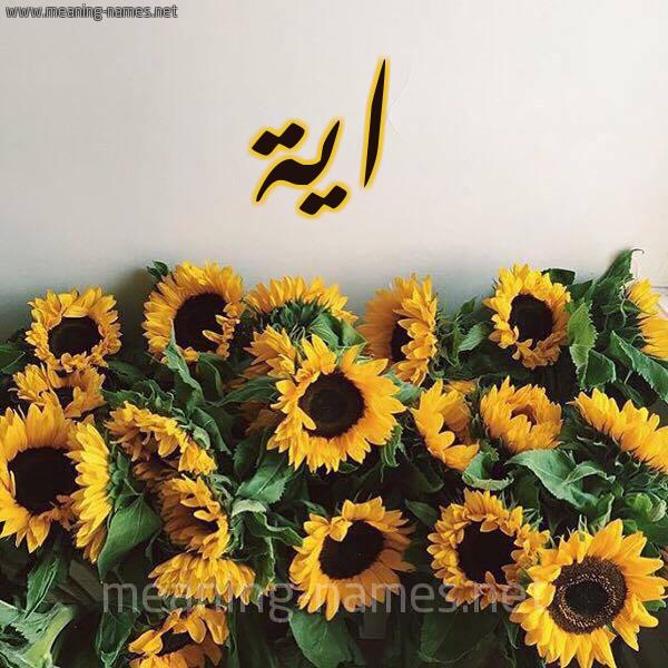 شكل 17 صوره دوار الشمس للإسم بخط رقعة صورة اسم اية Aya