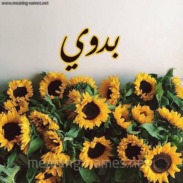 صورة اسم بدوي Bdwy شكل 17 صوره دوار الشمس للإسم بخط رقعة