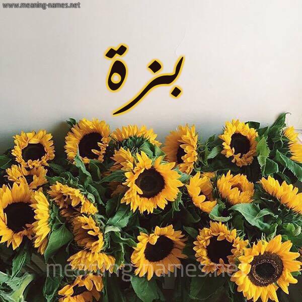 صورة اسم بزة Bzh شكل 17 صوره دوار الشمس للإسم بخط رقعة