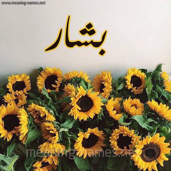 صورة اسم بشار Bshar شكل 17 صوره دوار الشمس للإسم بخط رقعة