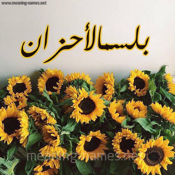صورة اسم بلسمالأحزان Blsmal'ahzan شكل 17 صوره دوار الشمس للإسم بخط رقعة
