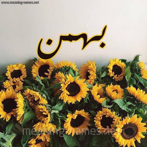 صورة اسم بهمن Bhmn شكل 17 صوره دوار الشمس للإسم بخط رقعة